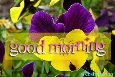 GOOD MORNING image of flower DOWNLOAD