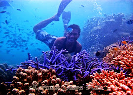 snorkeling pulau tengah karimun jawa