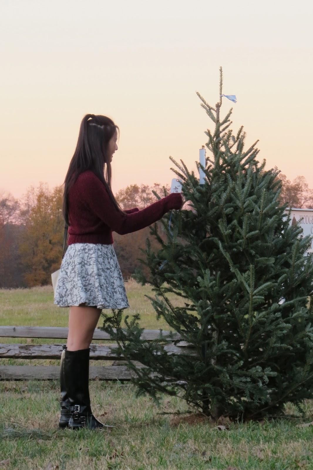 Christmas_tree_shopping