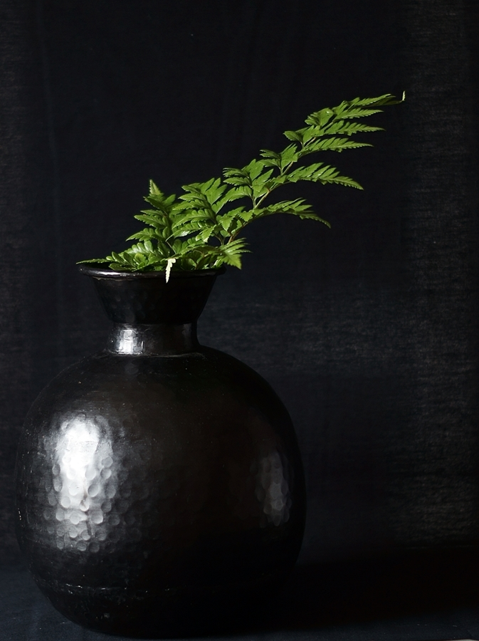 Blog + Fotografie by it's me fim.works - Lederfarn in schwarzer Vase