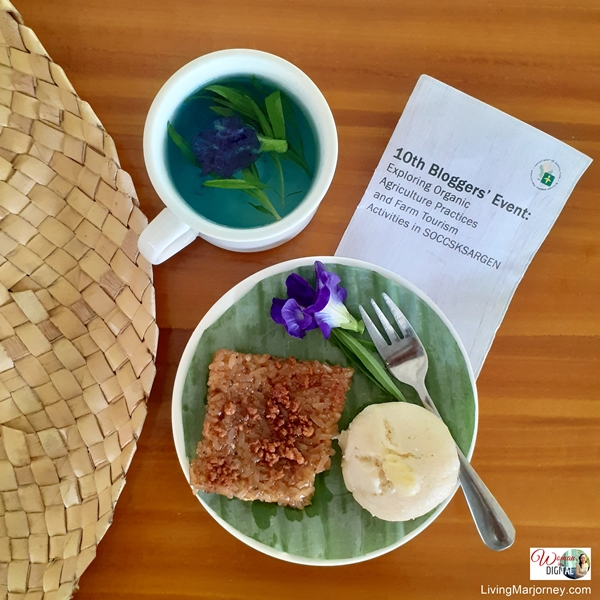 Rice cake and Tarragon tea with Blueternate