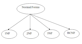 What is Normalization in the database