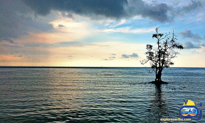 pulau sebira di wilayah pulau harapan kepulauan seribu utara