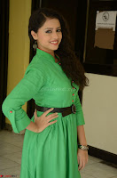 Geethanjali in Green Dress at Mixture Potlam Movie Pressmeet March 2017 045.JPG