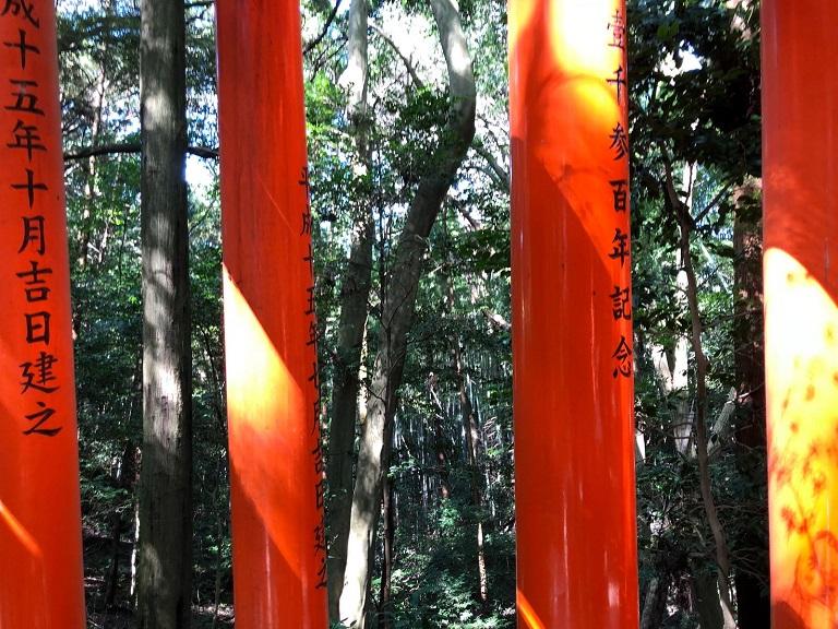 visita-guiada-kyoto-fushimi-inari