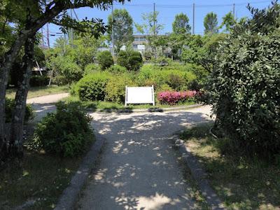 枚方市・市民の森(鏡伝池緑地) 緑化植物見本圏ゾーン