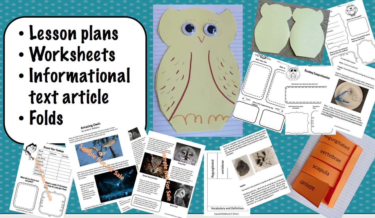 Teaching Science With Lynda Owl Pellets With Interactive Notebook Ideas