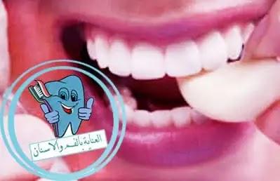 تسوس الاسنان, مسكن للاسنان, علاج الاسنان, اسباب تسوس الاسنان, سوسة الاسنان, علاج التسوس, القرنفل للاسنان, علاج تسوس الاسنان بالثوم, تسوس, علاج تسوس الاسنان بدون طبيب, ضرس مسوس, اعراض تسوس الاسنان, اسباب تسوس الاسنان رغم تنظيفها, علاج تسوس الاسنان الامامية, تسوس الأسنان, علاج تسوس الضرس, علاج الاسنان بالاعشاب, تسوس الضرس, تسوس الاسنان الامامية, علاج تسوس الاسنان عند الاطفال 3 سنوات, كيف ازيل تسوس الاسنان, مراحل تسوس الاسنان, علاج تسوس الاسنان بدون حشو