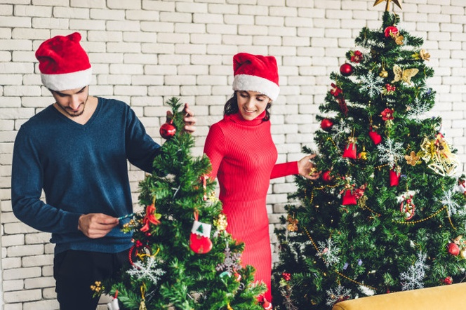 Christmas Couple DP 2020