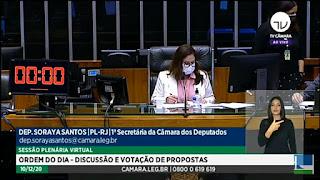 Plenário aprova projetos prioritários da bancada feminina