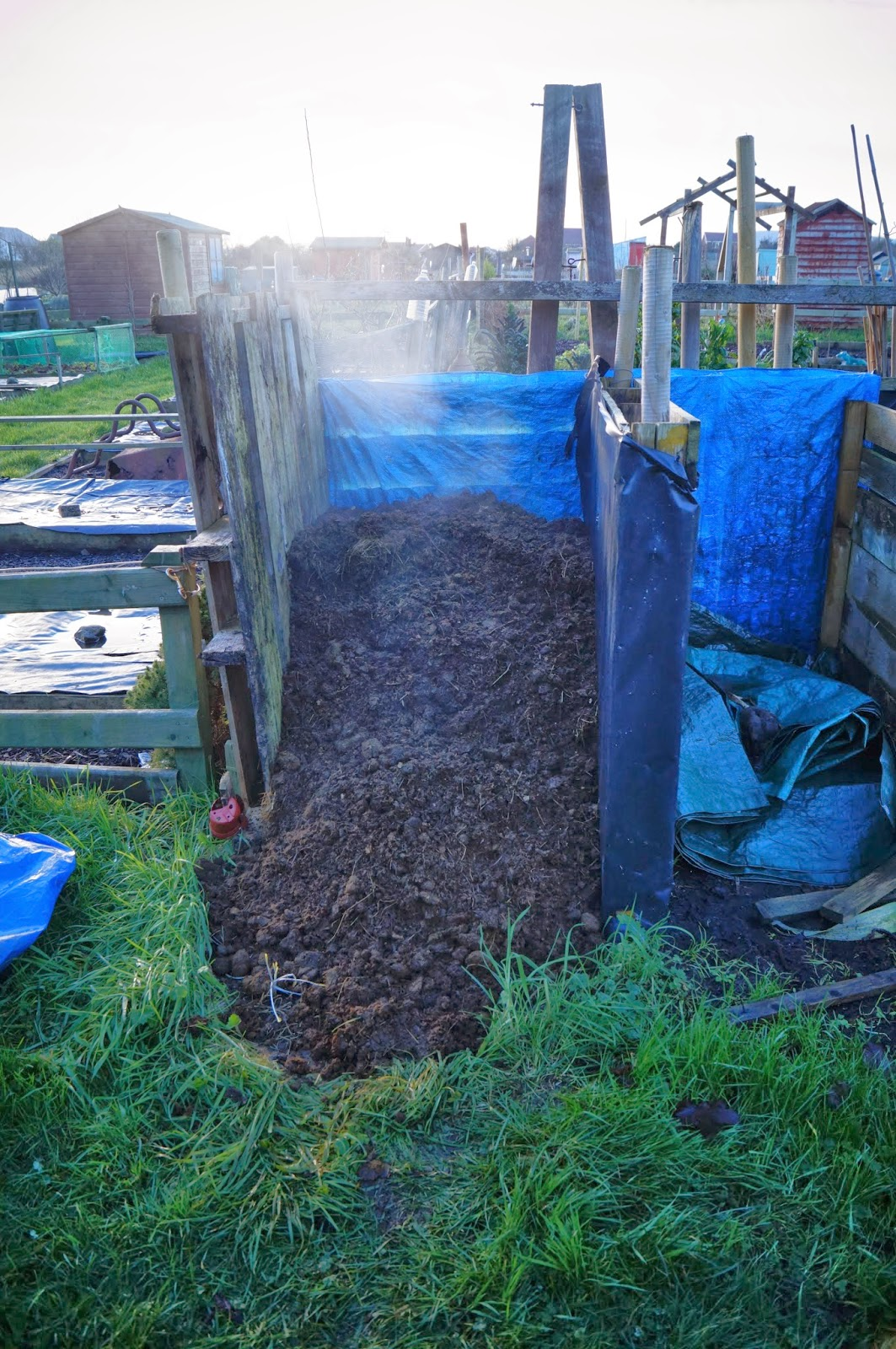 steaming horse poop - 'Grow Our Own' Allotment Blog