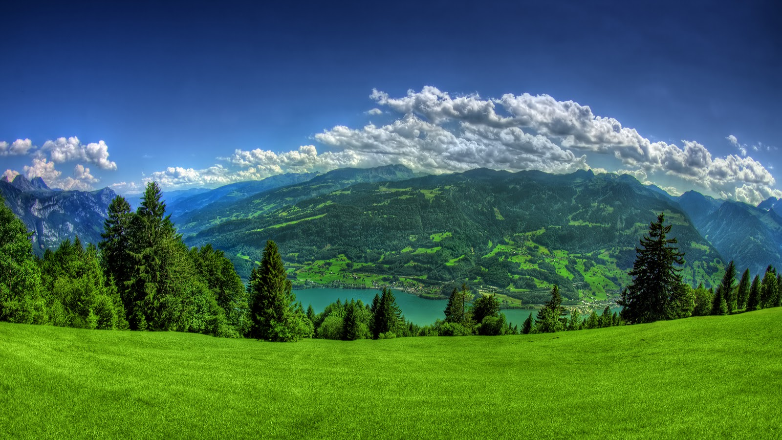 Nature High Quality Mountain Above Clouds Green Forest