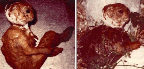 La única foto del cadaver del extraño ser de Varginha