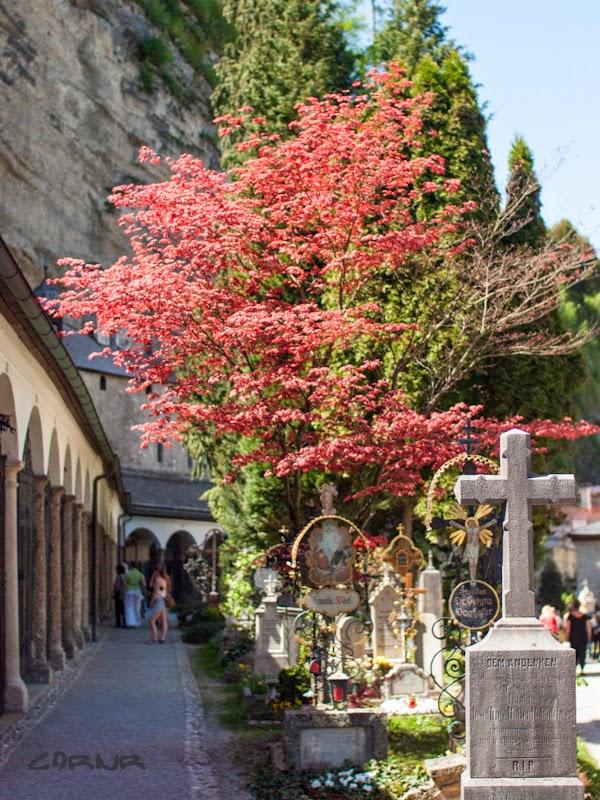 Cimitirul Sf. Petru, Salzburg