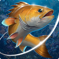 Game Lưỡi Câu – Fishing Hook Hack Cho Android