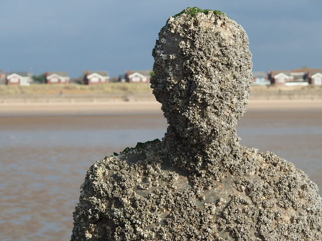 A statue covered in barnacles showing its covered by the tide