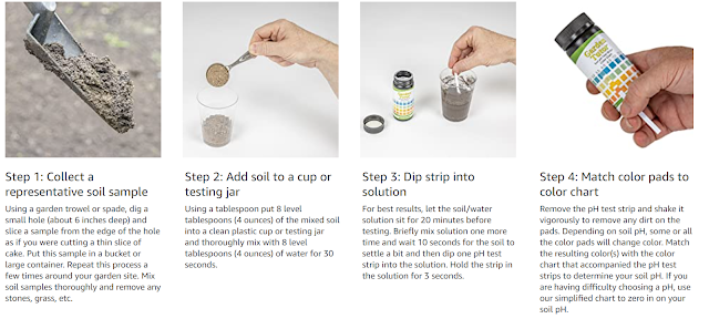 how to use pH strips to test soil