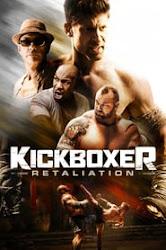 descargar Kickboxer: Contrataque Pelicula Completa HD 720p [MEGA] [LATINO]