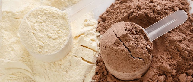 vegan chocolate protein powder recipes