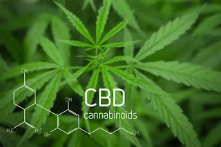 health-gold-cbd-oil-reviews-and-price