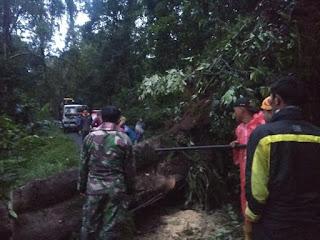 Tim Siaga Bencana Polres  Lumajang Bersama  Elemen Buka Jalur Tertutup Longsor