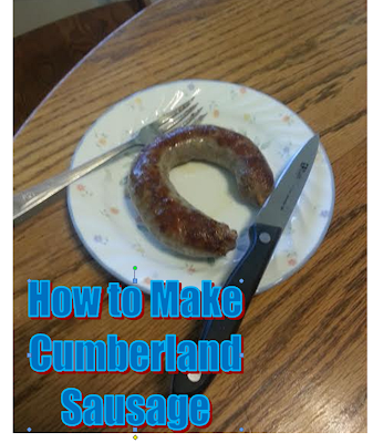 Cumberland Sausage is a delicious spiced sausage from the North of England. Here is a small portion of the sausage cooked and presented on a plate.