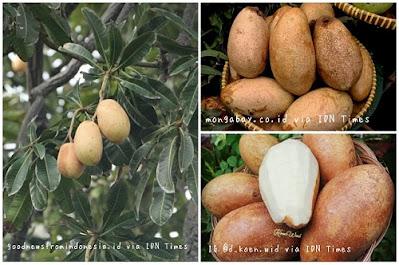 Buah kemang, buah khas Bogor yang identik dengan buah wani bali