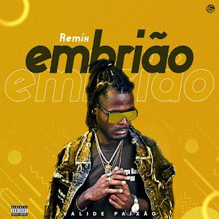 Valide Paixão - Embrião (Remix) (Afro Naija) (Download)