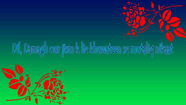 Dil, Damagh our jism k lie khuwateen se mutaliq nikaat