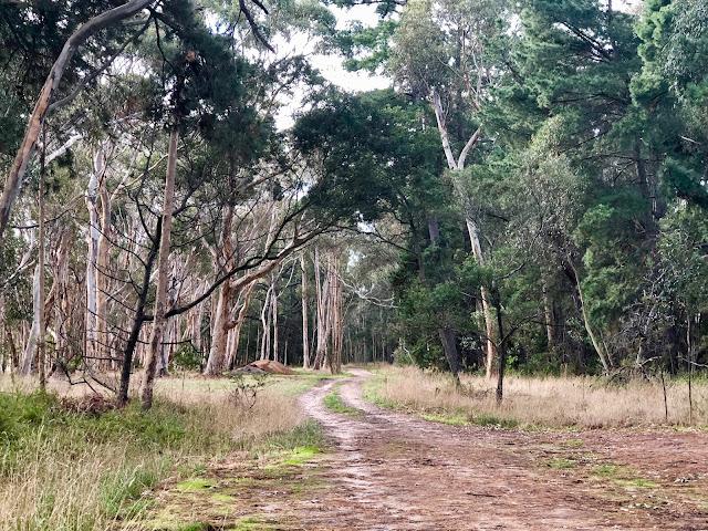 Coolart Homestead, Somers walking trails