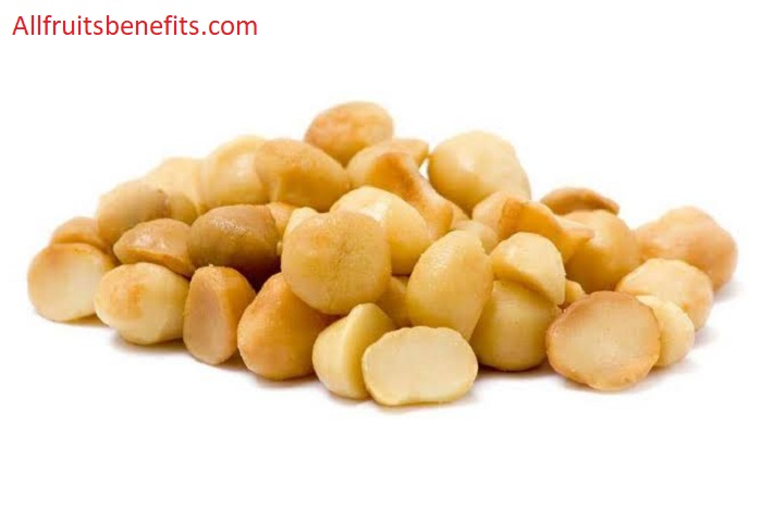 macadamia nuts benefits and side effects,nutritional value of macadamia nuts,macadamia health benefits,Macedonia nuts health benefits,macadamia nuts side effects,benefits of eating macadamia nuts,macadamia hair spa benefits,macadamia benefits for hair,macadamia nuts weight loss,macadamia nutritional value,macadamia nut oil use,health benefits of macadamia nut oil,macadamia benefits and side effects,macadamia oil health benefits,macadamia honey benefits,advantages of macadamia nuts,nutritional benefits of macadamia nuts,health benefits of macadamia milk,nutritional content of macadamia nuts,macadamia nuts nutrition facts and health benefits,benefits of macadamia nuts in the body,macadamia health benefits and side effects,macadamia nuts and weight loss,macadamia nutritional benefits,the benefits of macadamia nuts,macadamia butter benefits,macadamia nuts heart health,macadamia nuts health facts,mac nut oil benefits,benefits of macadamia nut milk