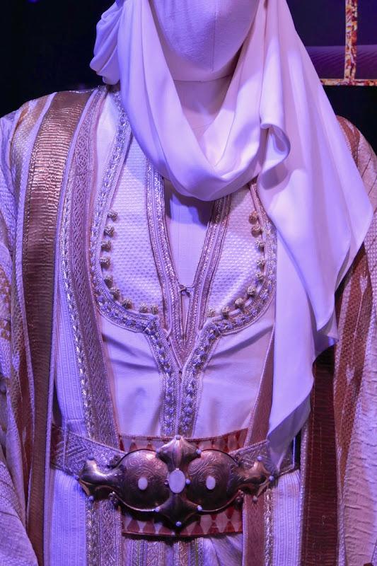 Aladdin Prince Ali costume detail