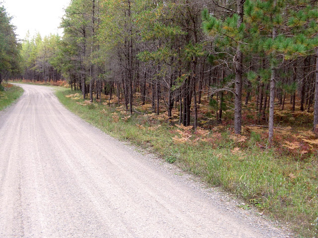A state road in the woods of Upper Michigan
