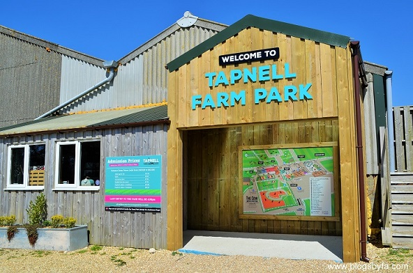 Tapnell Farm Park Isle of Wight