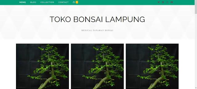 https://toko.bonsailampung.store/