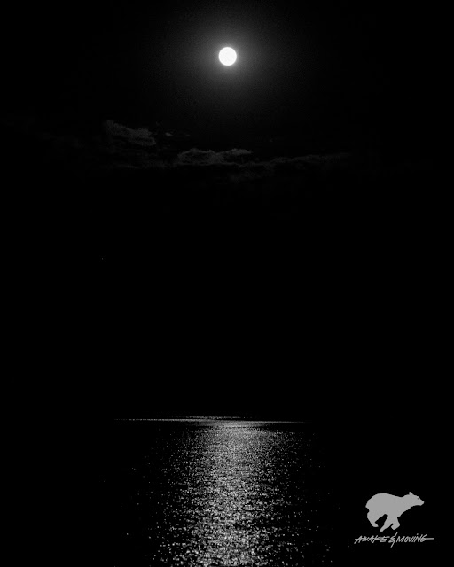 Full moon with Alli Bee. Austin, TX.