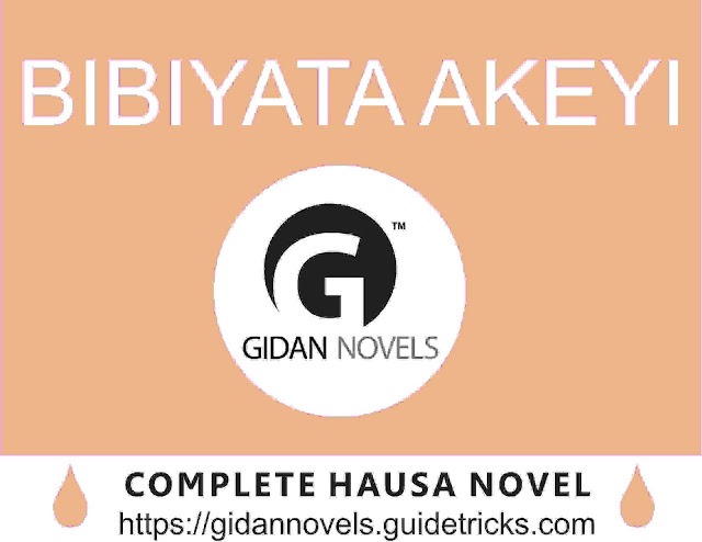 Bibiyata Akeyi Complete (dandalin hausa novels)