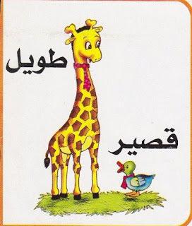 55 Kata Benda dan Kata Sifat Bahasa Arab dan Artinya