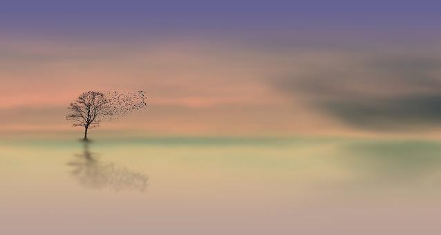 Landschaft im Nebel, Baum spiegelt sich in unterem Teil des Bildes, Vögel fliegen vom Baum, verlaufene Farben von rosa, grün, grau und weiß