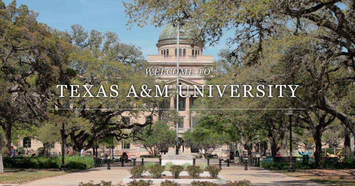 Top 10 Best Universities in Texas, USA