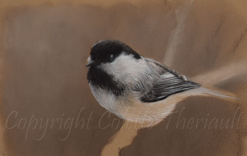 Step 2 of Chickadee painting by Colette Theriault