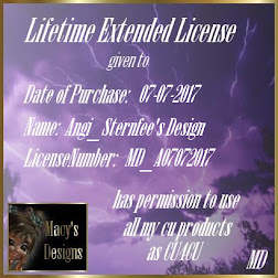Lifetime Extended License