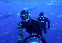 Freediving Malta Gozo Comino Tuna Farm - PJ Freediving