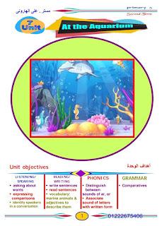 مذكرة لغة إنجليزية للصف الخامس الابتدائي الترم الثاني 2020 لمستر علي الهاروني