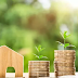 Cara Investasi Untuk Para Pemula Yang Wajib Kamu Tahu Agar Tidak Rugi