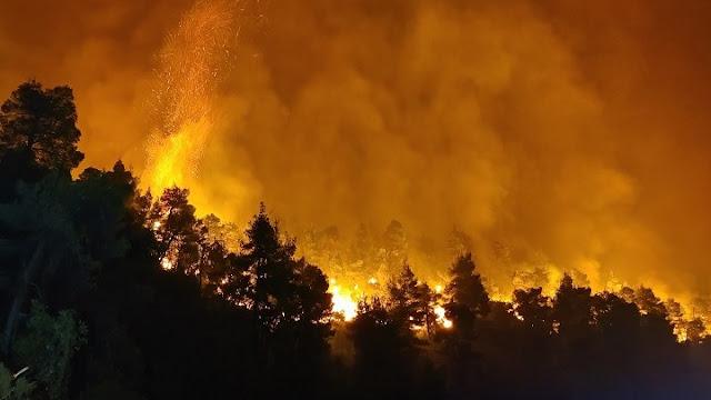 Τραγική η κατάσταση στη Γορτυνία - Εκκενώνονται 12 οικισμοί - Ανεξέλεγκτη η πυρκαγιά