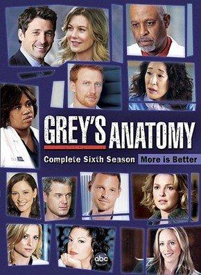 Baixar Grey's Anatomy 6ª Temporada Dublado