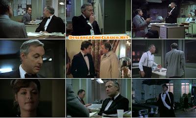 Arresto preventivo (1981)