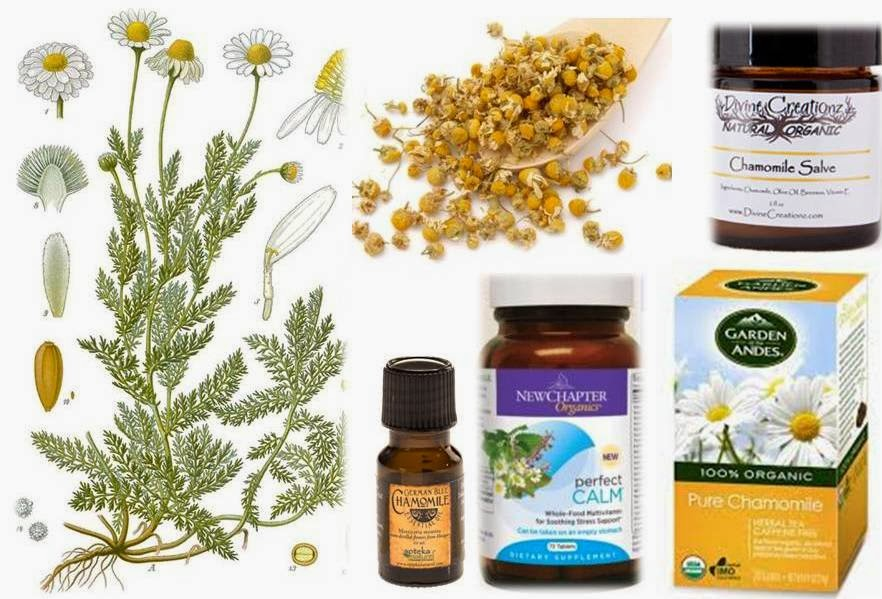 Herbal interactions with prednisone :: nacionalniportal hr