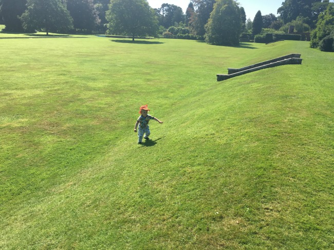 toddler-running-up-steep-grassy-slope-at-Dyffryn-Gardens